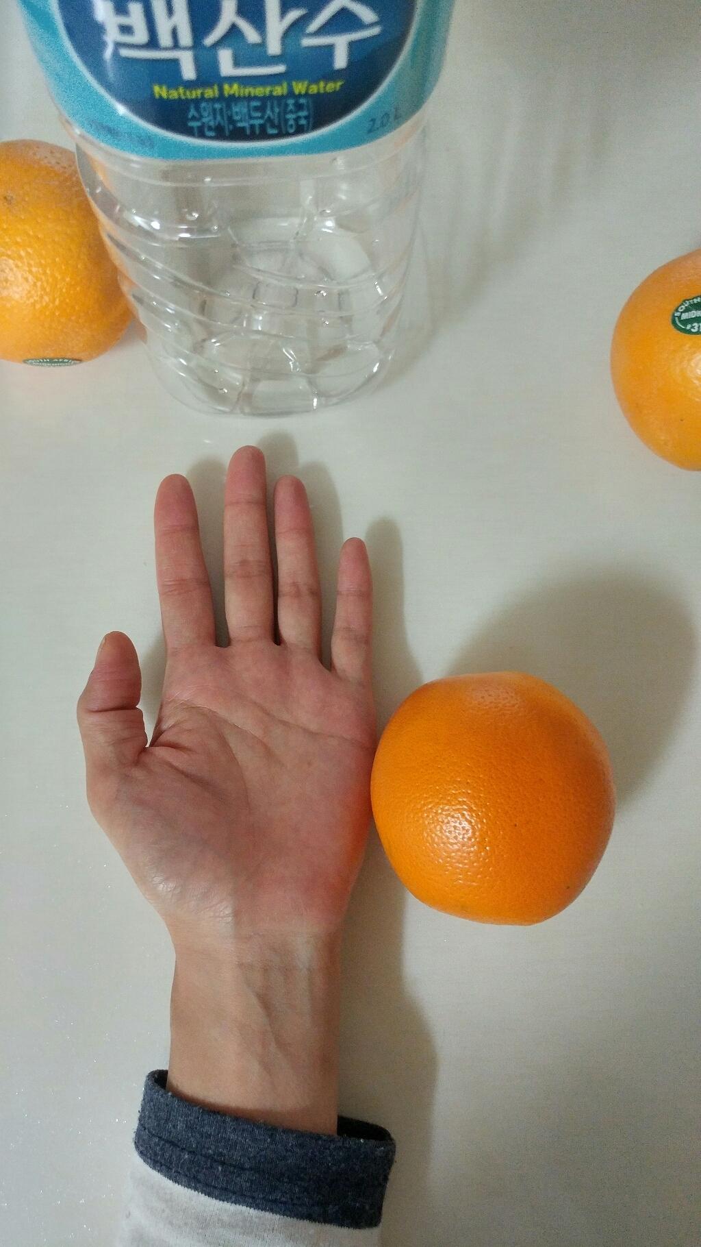 팜플러스 상큼한 오렌지 할인  리뷰 후기