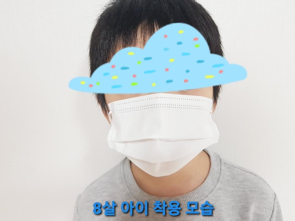 국산 비말차단 B필터 덴탈마스크 100매  리뷰 후기