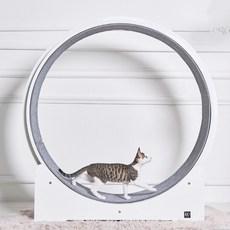 엘리시아 고양이 다이어트 원목 분해 조립식 카페트 우다다 다온 캣휠, 화이트우드