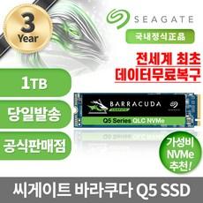 씨게이트 바라쿠다 Q5 M.2 NVMe SSD, ZP1000CV30001, 1TB