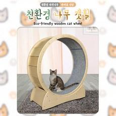 제이트레이드컴퍼니 우리집고양이장난감 캣타워 친환경캣휠 고양이휠, 소, 네이비