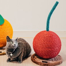 고양이 스트레스 해소 귤 체리 장난감 스크래쳐, 선택2. 오렌지